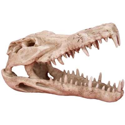 Enfeite de Aquário Craft Caveira Crocodilo